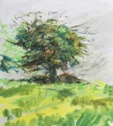 Watercolour Sketchbook