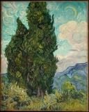 Van Gogh 2.jpeg