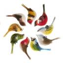 Bird Range.jpg