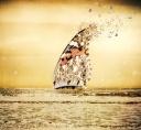 all aboard le papillon.jpg